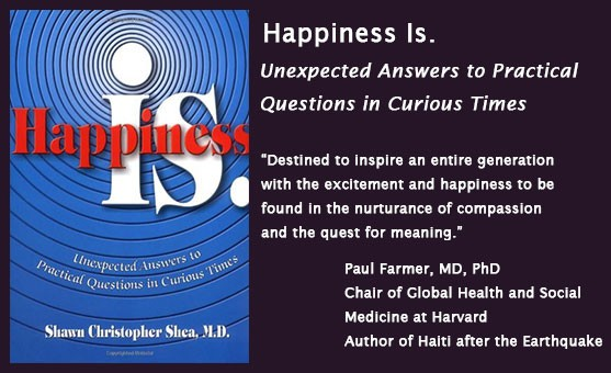 Happiness Is. Book
